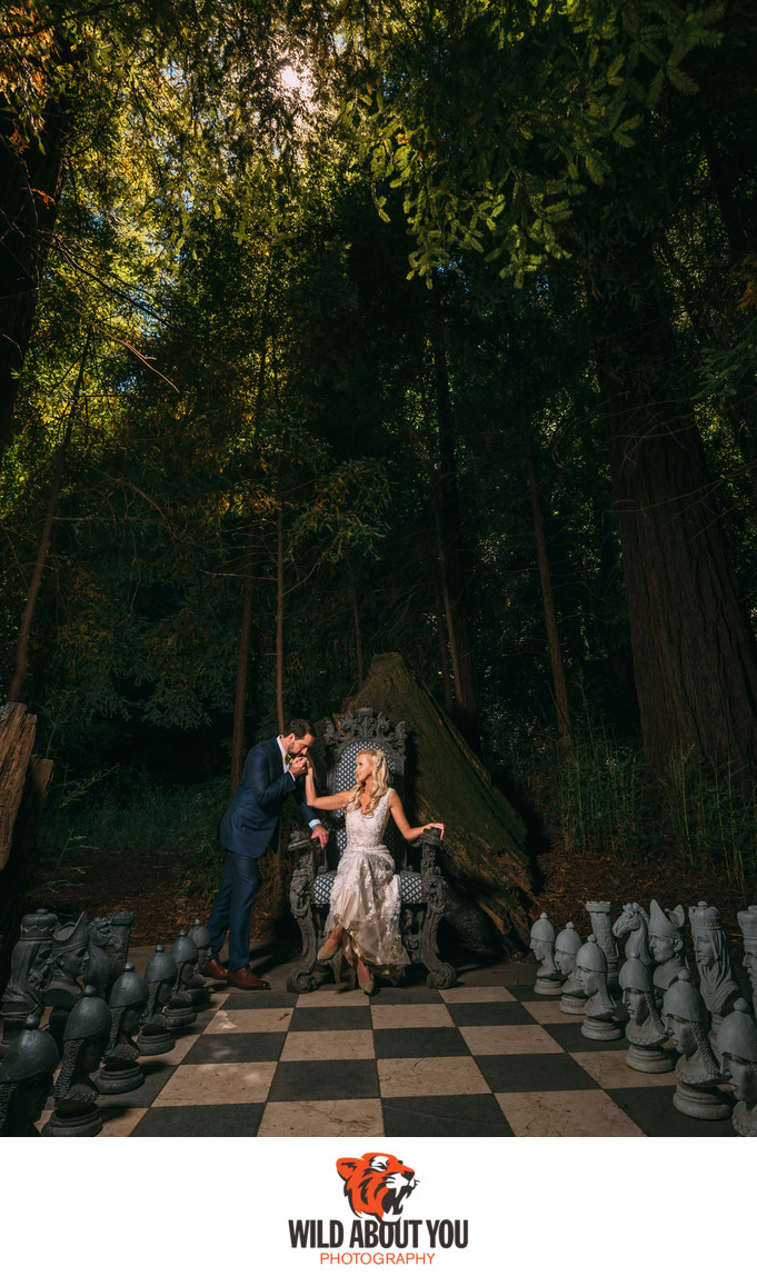 nestldown bay area fantasy wedding photographers