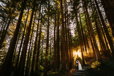 berkeley botanical garden wedding