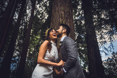 Bay Area Redwood Wedding Photographer