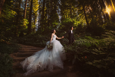 Cinematic Bay Area Wedding Photographer