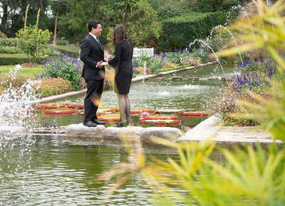 Villa Jardins Ephrussi de Rothschild Marriage proposal