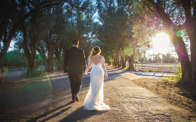 Award Winning Wedding Photographer Napa San Fransisco