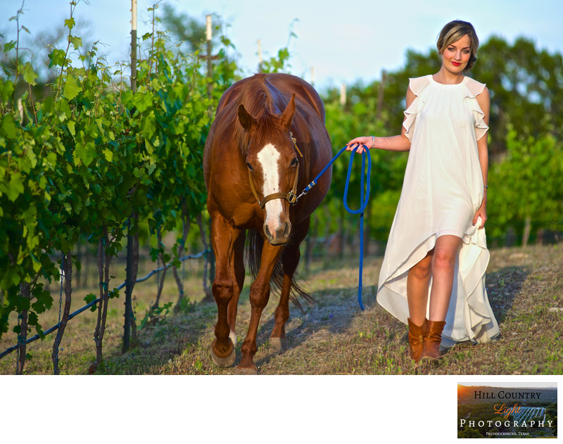 Horse and Bride in the vineyard at Hawks Shadow