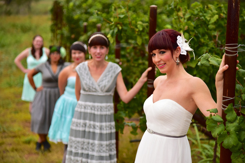 Bridal Party Portrat Vineyard Photograph William Chris