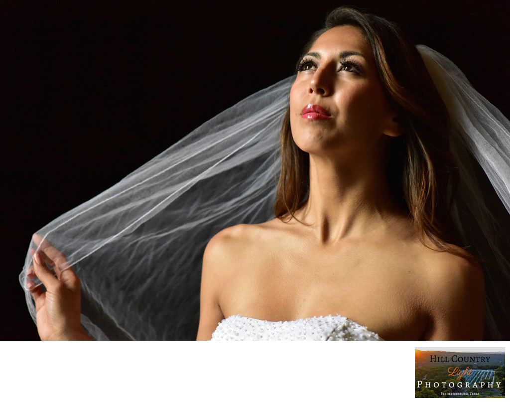 beautiful bridal portrait veil lovely brunette bride
