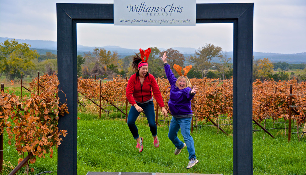 Picture Frame at William Chris Vineyards Hye TX