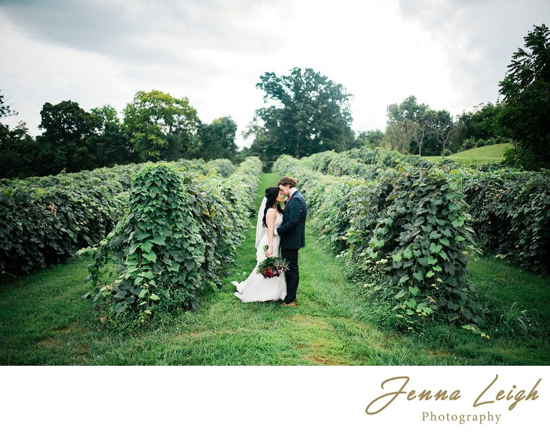 Shenandoah Valley Wedding Photographer