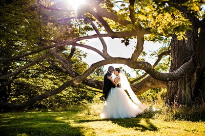 Cylburn Arboretum Wedding Photographer