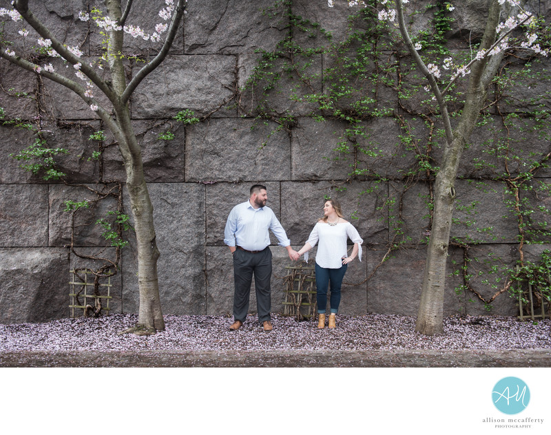 Washington DC Cherry Blossom Engagement Photos