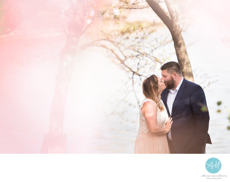 Engagement Photographer Washington DC Cherry Blossoms