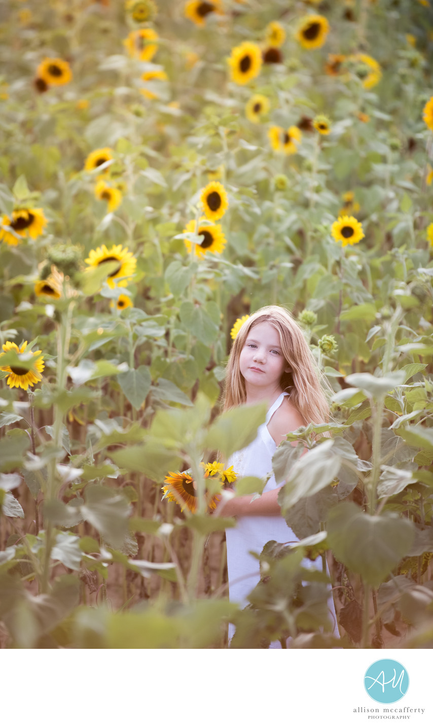 Sunflower Photographer South Jersey