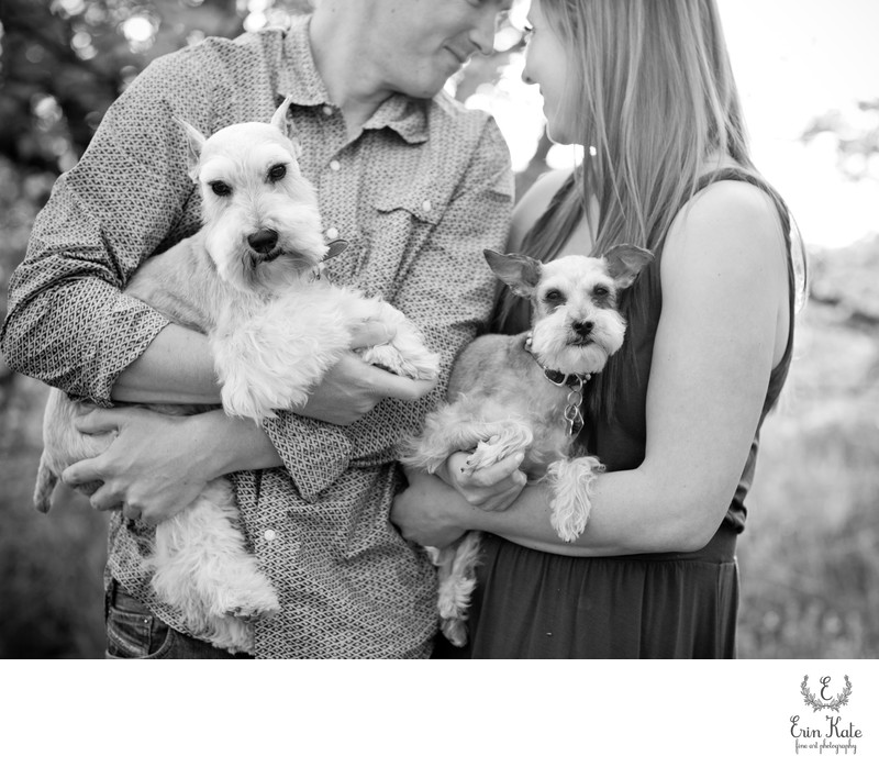 Salt Lake City Engagement Session with Dogs
