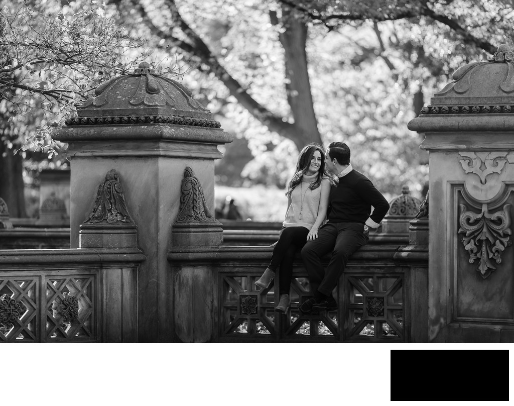 Central Park Engagement Photo - seangallery photography