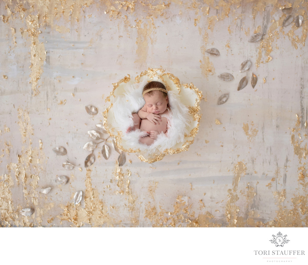 Philadelphia Newborn Photographer Gold