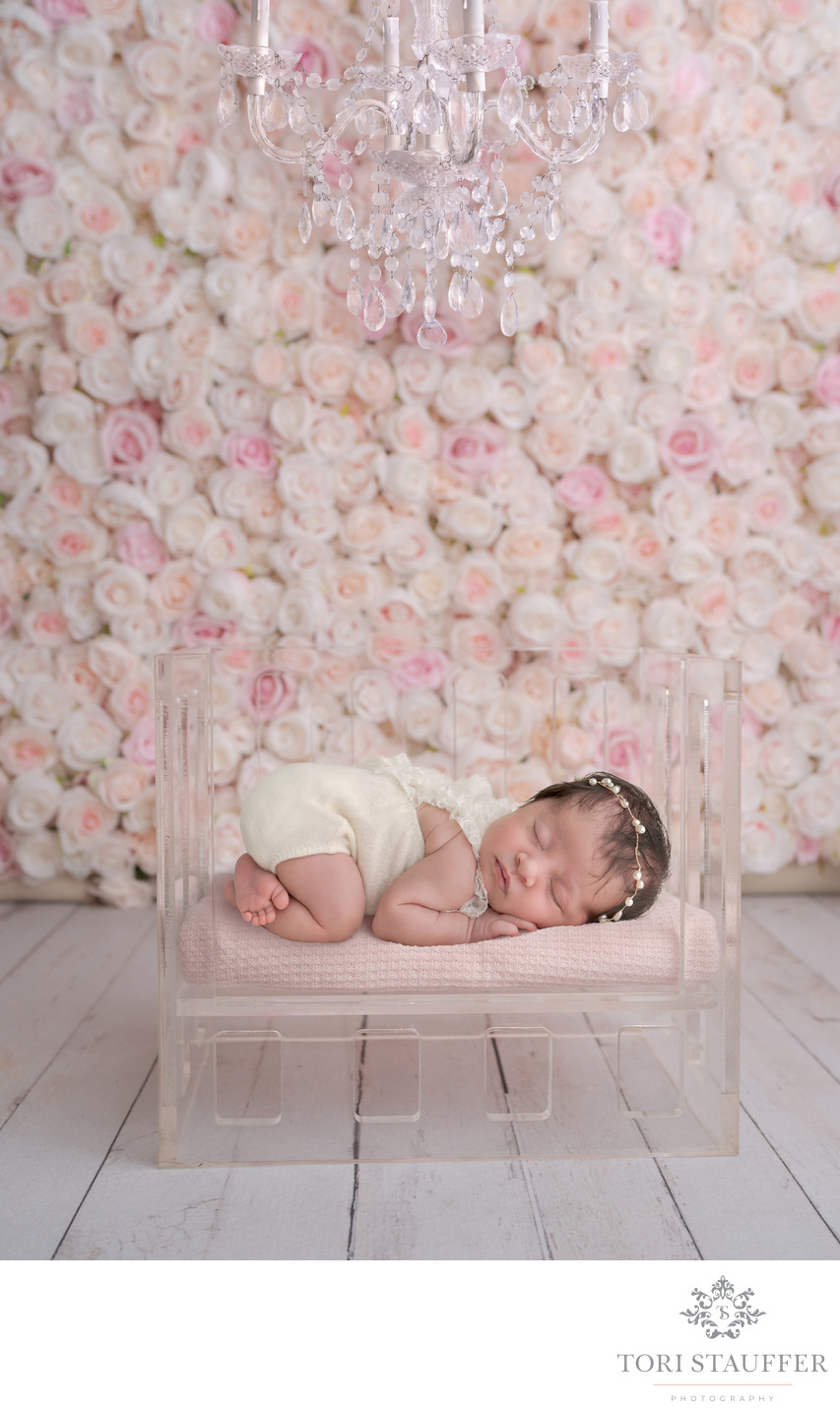 Philadelphia Newborn Photographer Flower Wall