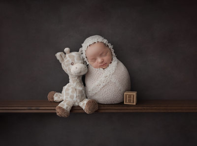 Philadelphia Newborn Photographer Giraffe
