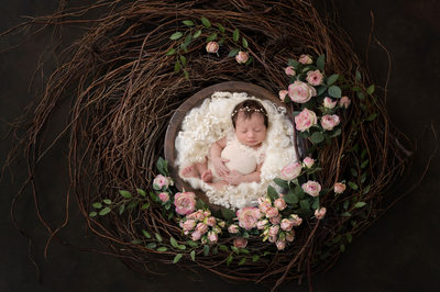 Philadelphia Newborn Photographer Art Museum Rose Nest
