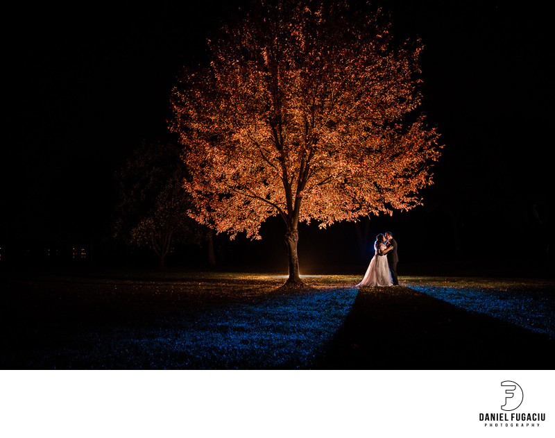 Pen Ryn Estate Wedding photo of bride and groom by tree