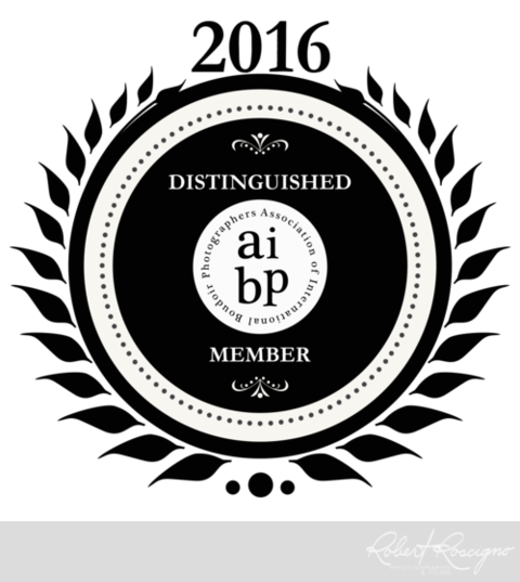 aibp-distinguished-member-new-jersey