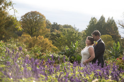 Wedding Photos at Morris Arboretum Rose Garden