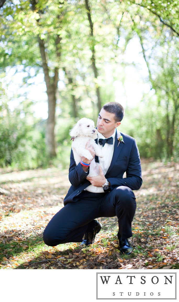 Weddings with Dogs Included in the Ceremonies