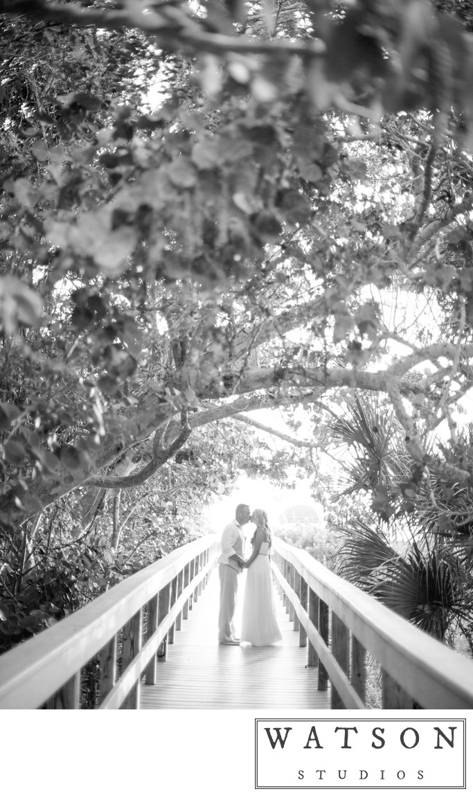 Marco Beach Ocean Resort Wedding Photos