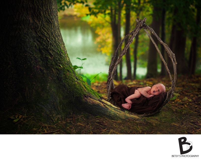 Newborn Portrait in Woods