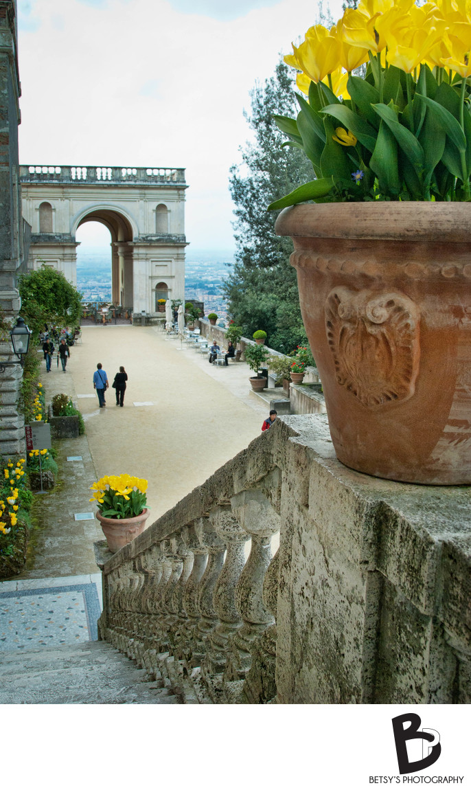 Flowers on Stairs at Villa D'Este (Tivoli, Italy)