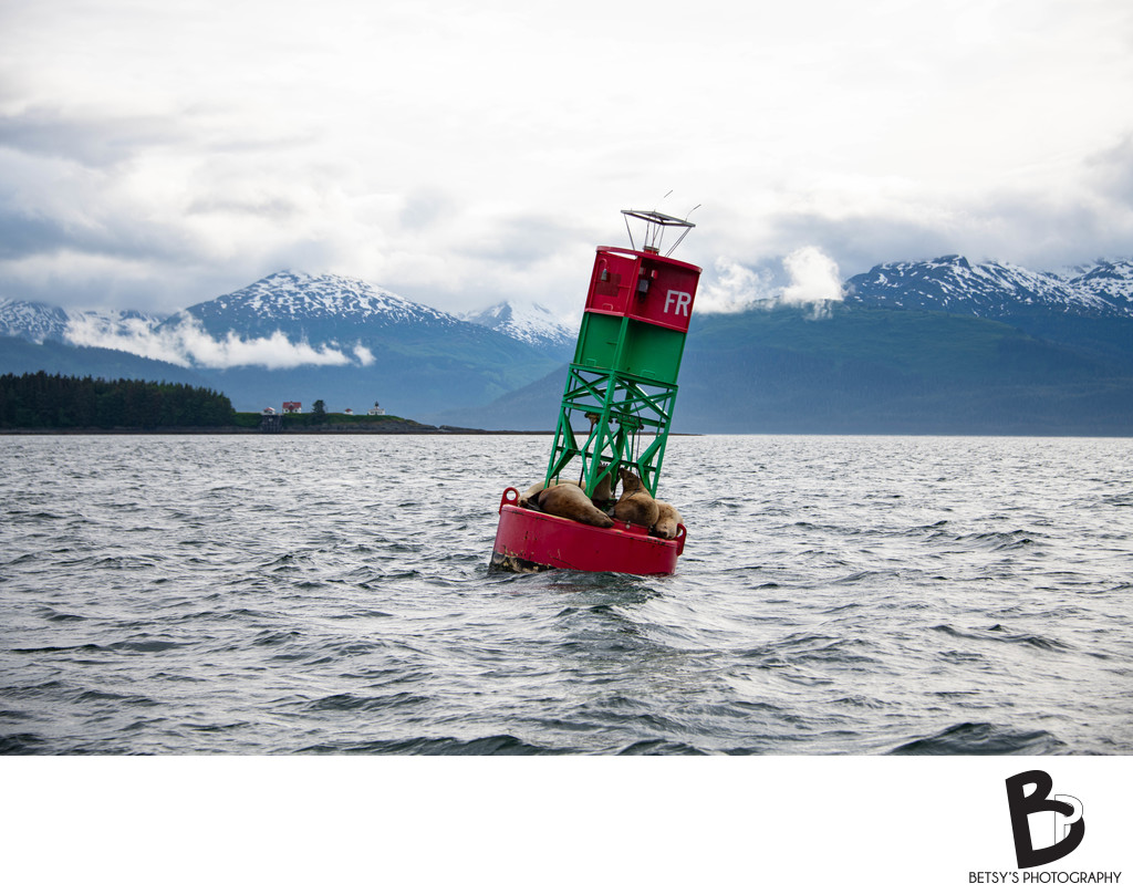 Point Retreat Lighthouse + Buoy with Alaskan Mountains