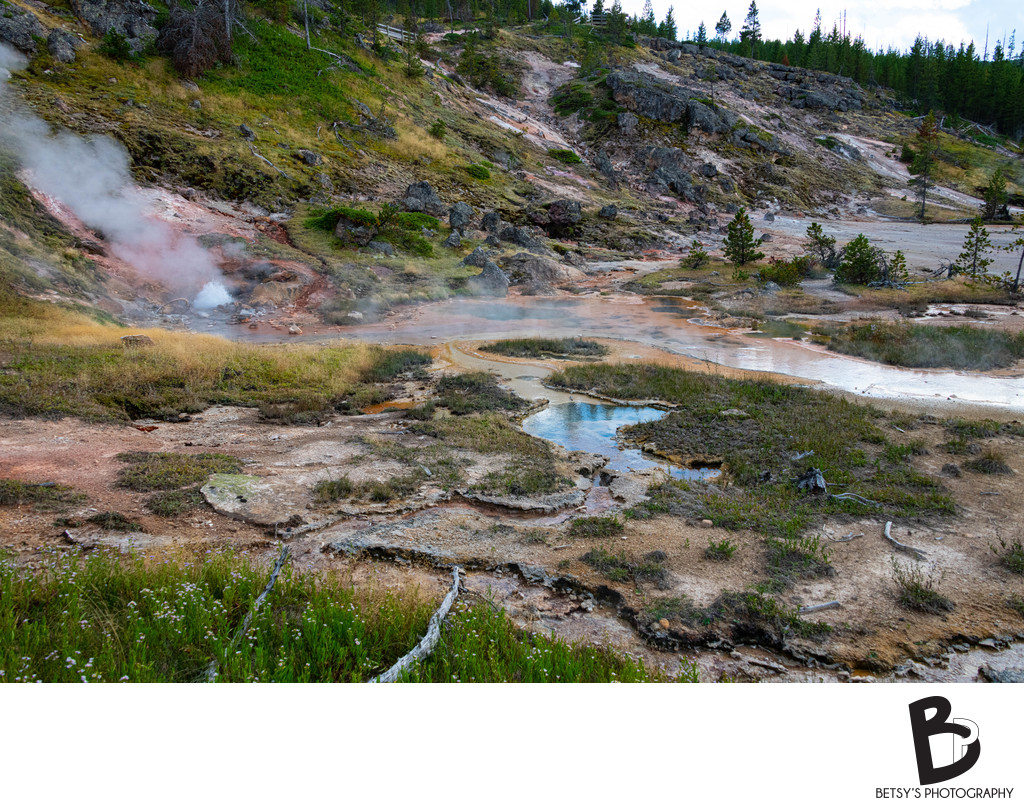 Artist Paint Pots in Yellowstone National Partk