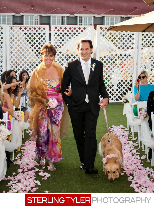 golden retriever walking down aisle at wedding with groom