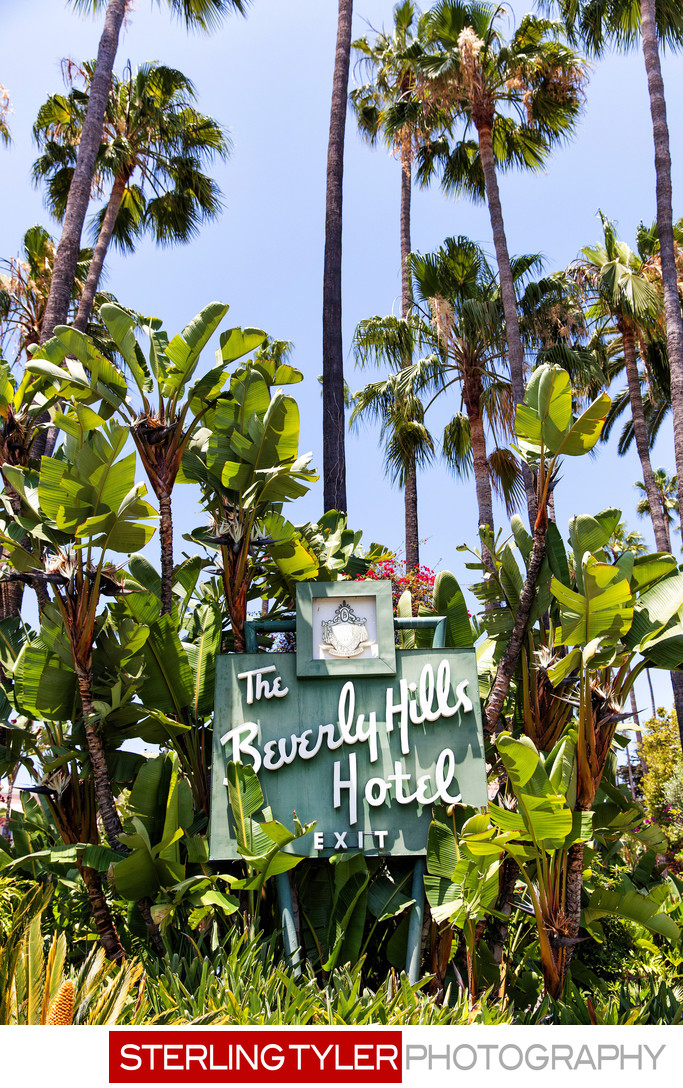 famous beverly hills hotel sign with palm trees