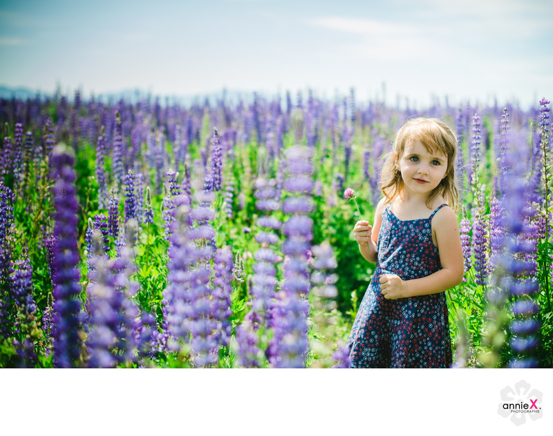 beautiful blue eyed girl in field of lupins in Lake Tahoe
