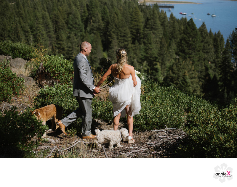 Newlyweds with their dogs over Tahoe city in Lake Tahoe