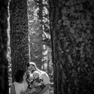 black and white family  with baby in trees