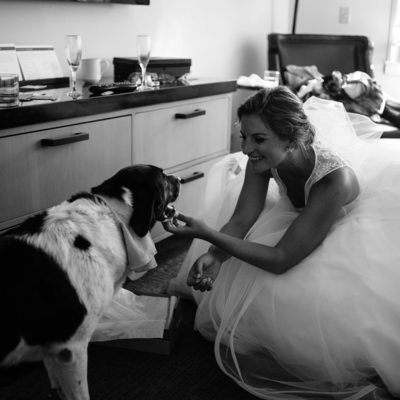 bride and her dog getting ready at Hyatt Tahoe