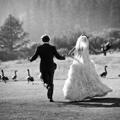 Professional Wedding  Whotographer Resort Squaw Creek