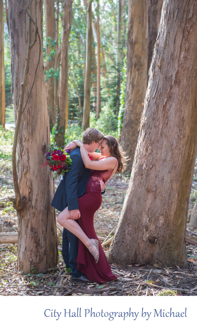 Professional Wedding Photography in the trees of the Presidio