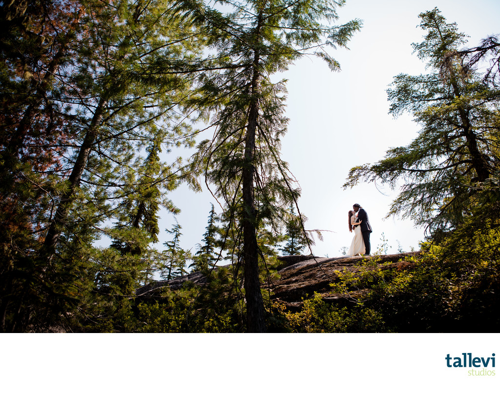 Sea to Sky Gondola Wedding Pictures