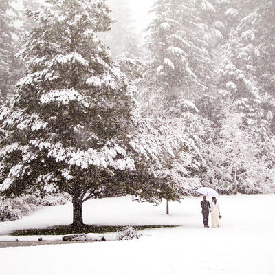 Whistler Winter Elopement