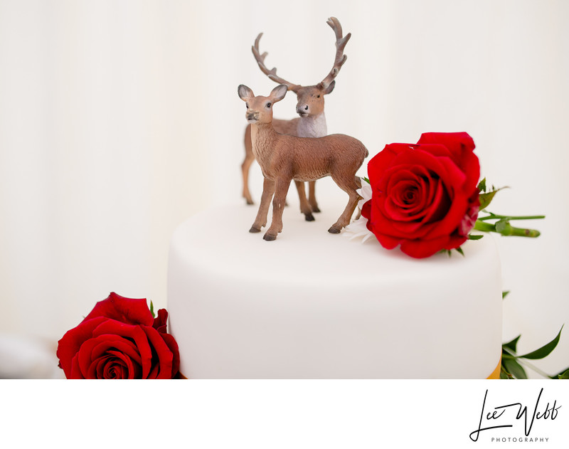 Wedding Cake Topper Worcestershire