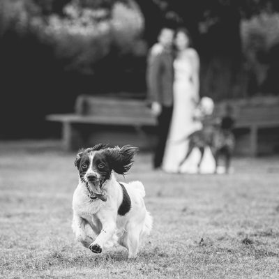 Bewdley Wedding Photography