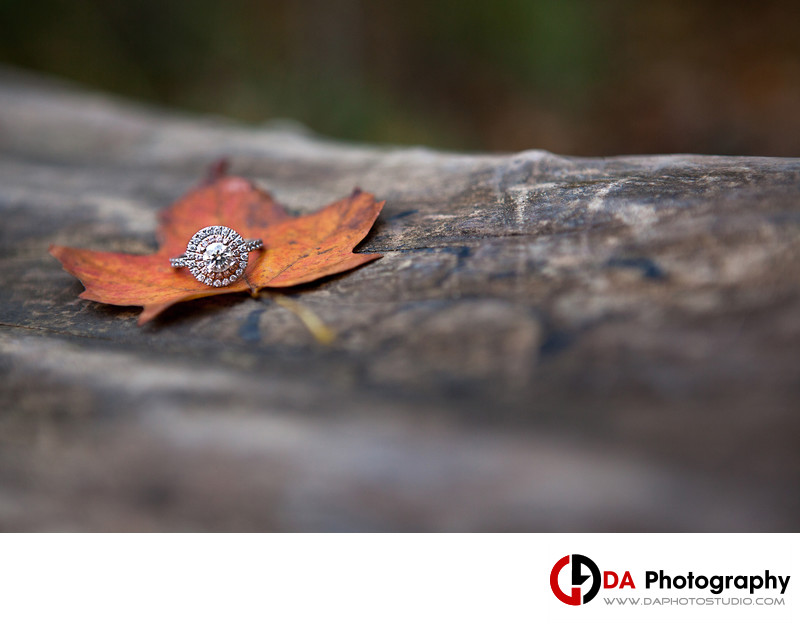 Engagement Ring at Albion Falls