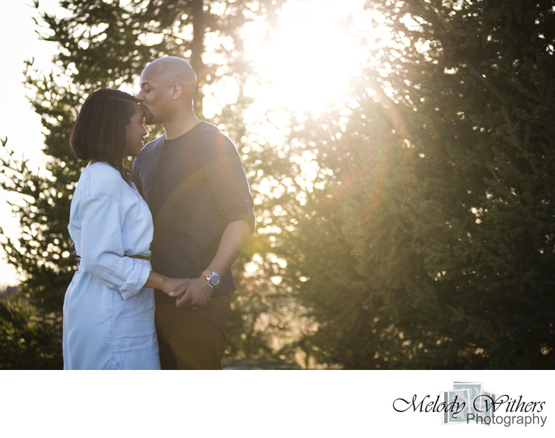 Coxhall-Garden-Carmel-Indiana-Engagement-Wedding-Photography