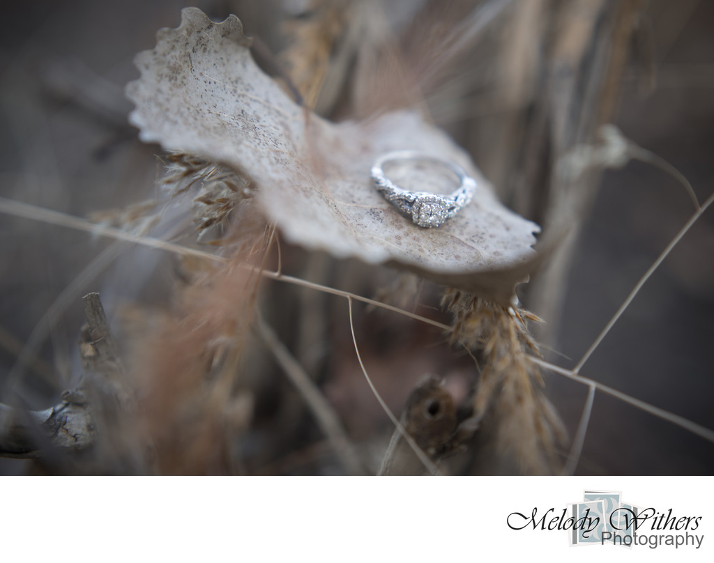 Fall-Ring-Detail-Muncie-Wedding-Photographer