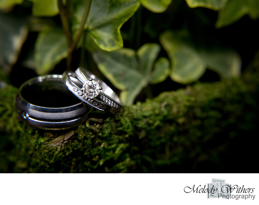 Lord-of-the-rings-theme-photographer-wedding-Purdue