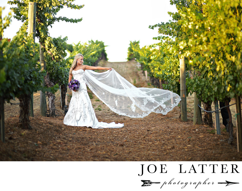 Beautiful Wedding Bridal Portrait at Wilson Creek Winery in Temecula, California.