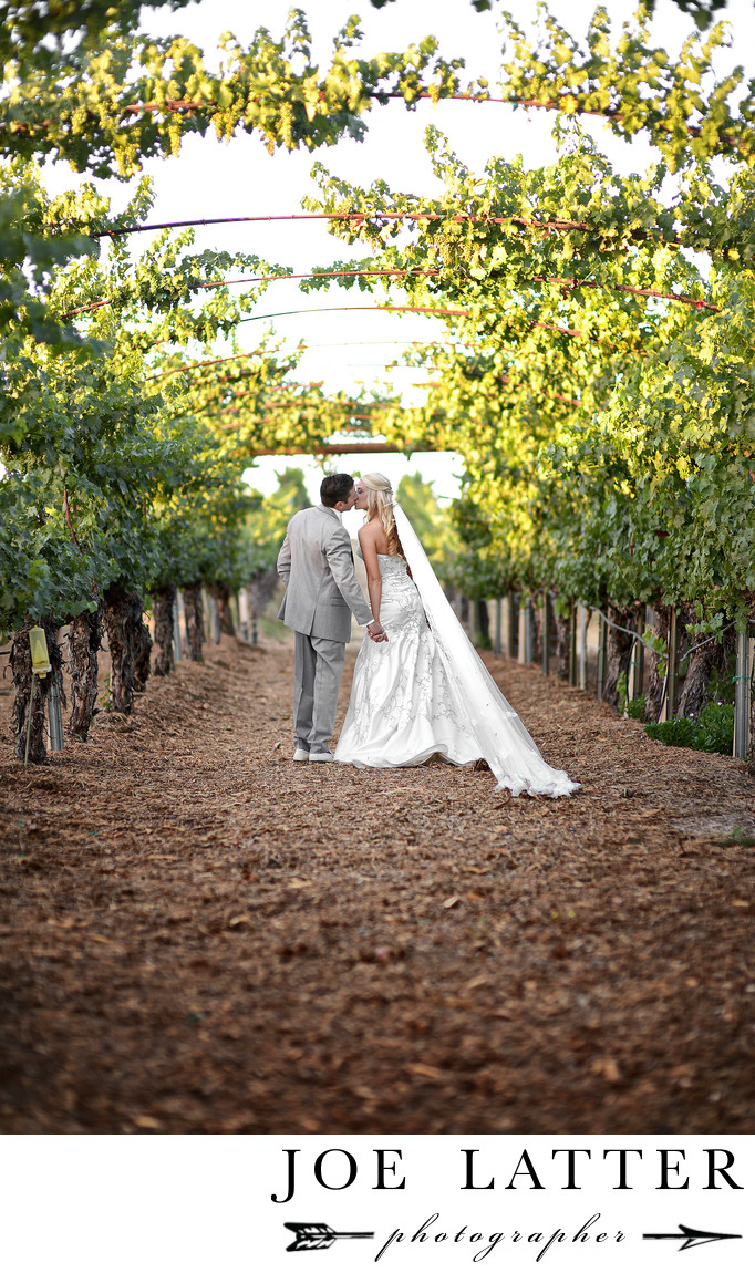 Favorite Wedding Photographer At Wilson Creek Winery Vineyards In Temecula California