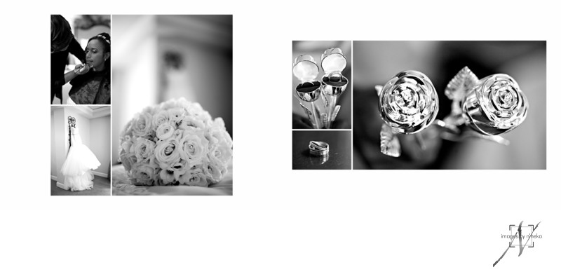 Bride's details before her Chateau Elan Wedding