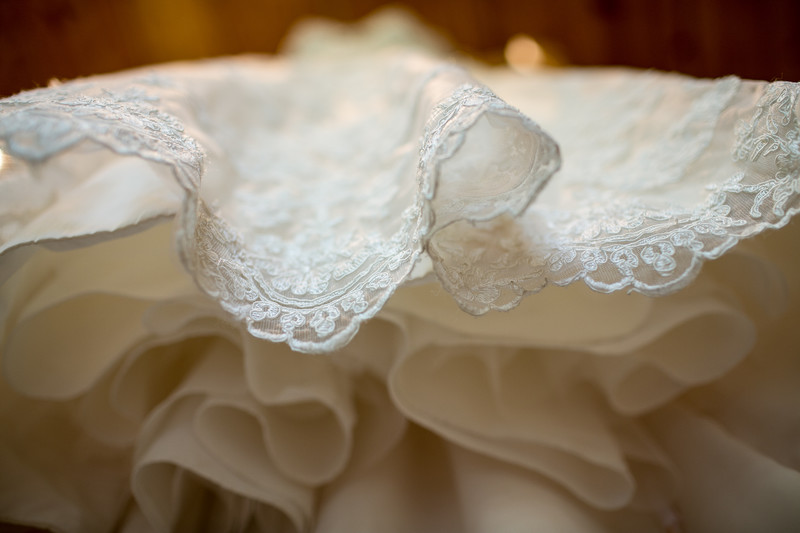 Wisconsin Wedding Dress Photograph